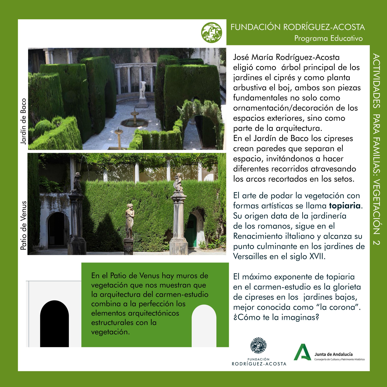 Vegetación del carmen-estudio 2-2