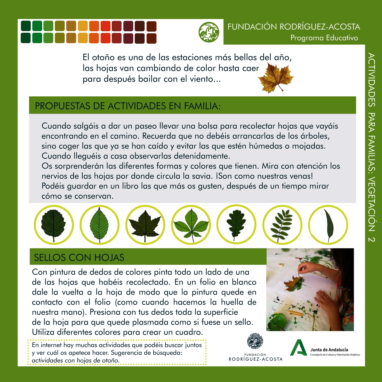 Vegetación del carmen-estudio 2-3